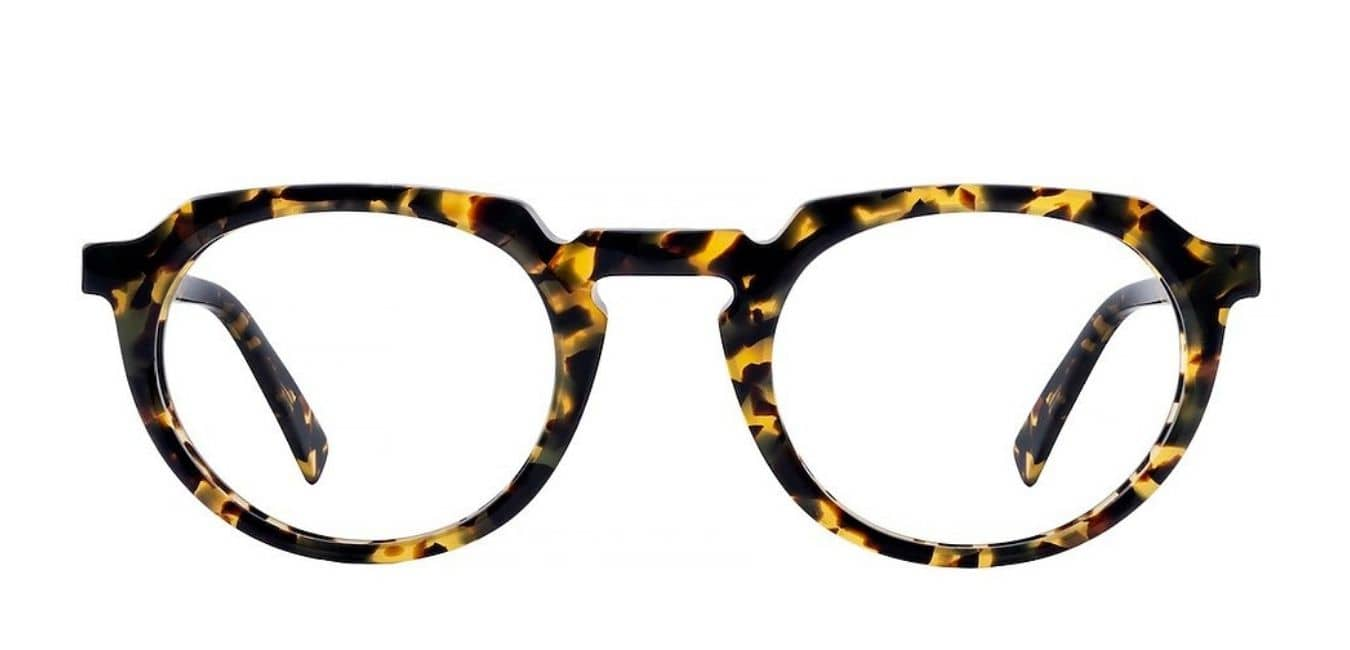 Lunettes Forest - Bruno Chaussignand - L'Indice Opticien Tours